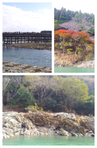 Collage 2013-11-24 14_18_11