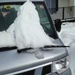 大雪の爪あとww