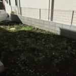 庭に芝を植えてみました!!