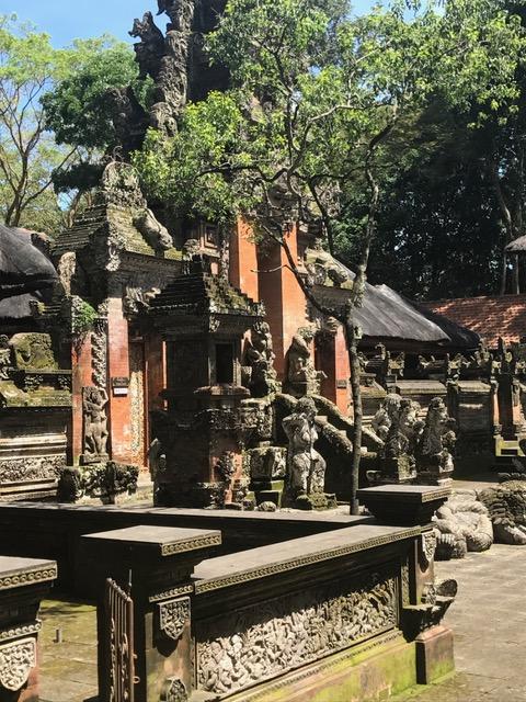 image1 (1)